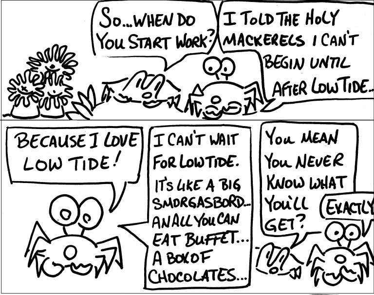 boxofchocolate3